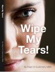 09 - Wipe My Tears